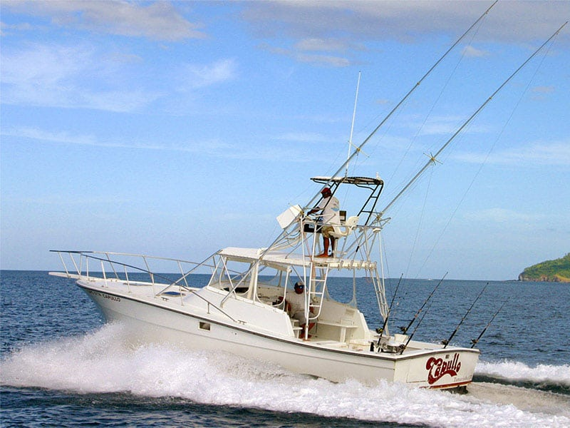 Los suenos fishing charters bachelor party costa rica for Los angeles fishing charters